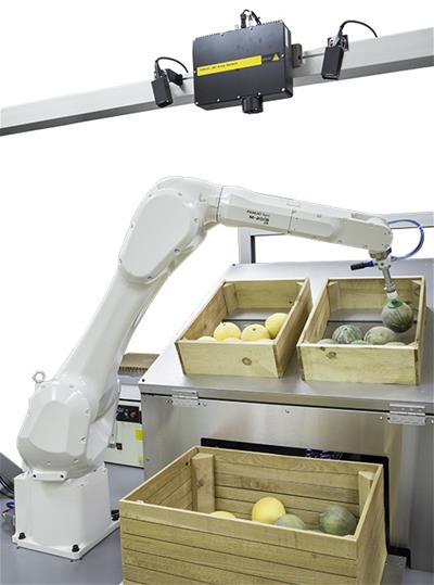 food-grade-industry-robots